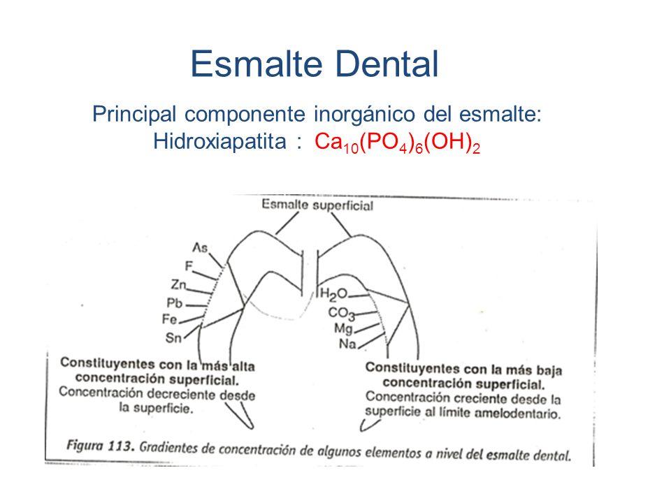 Esmalte Dental Principal componente inorgánico del esmalte: Hidroxiapatita : Ca 10 (PO 4 ) 6 (OH) 2