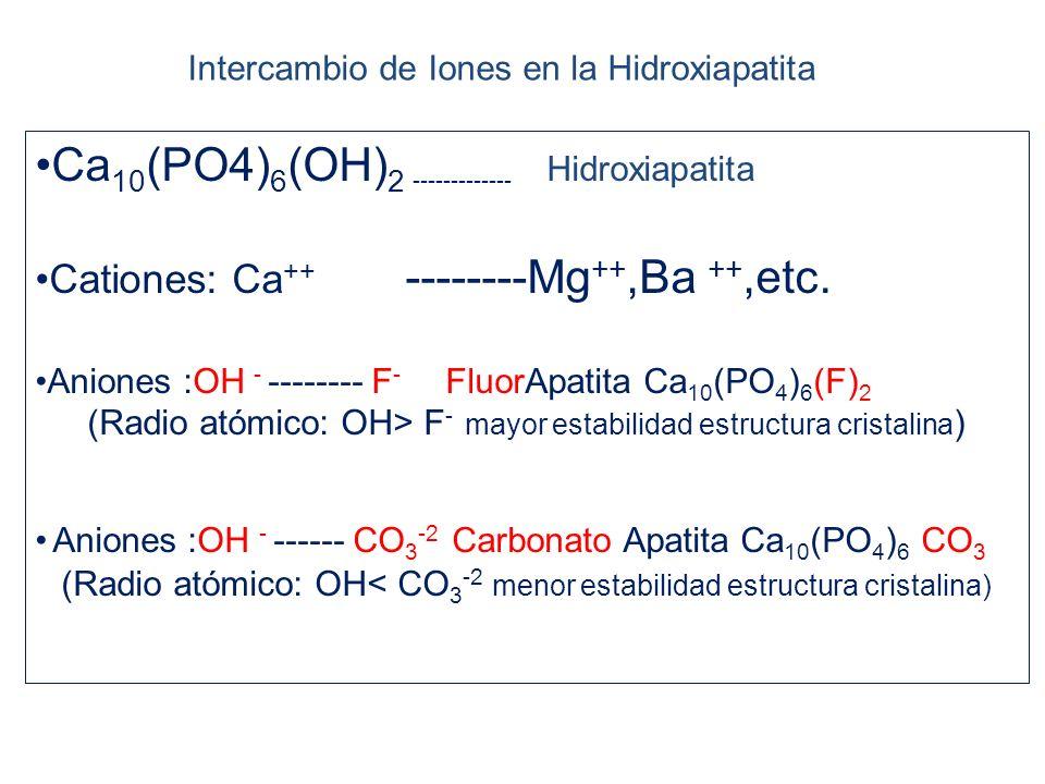 Intercambio de Iones en la Hidroxiapatita Ca 10 (PO4) 6 (OH) 2 ------------- Hidroxiapatita Cationes: Ca ++ --------Mg ++,Ba ++,etc.