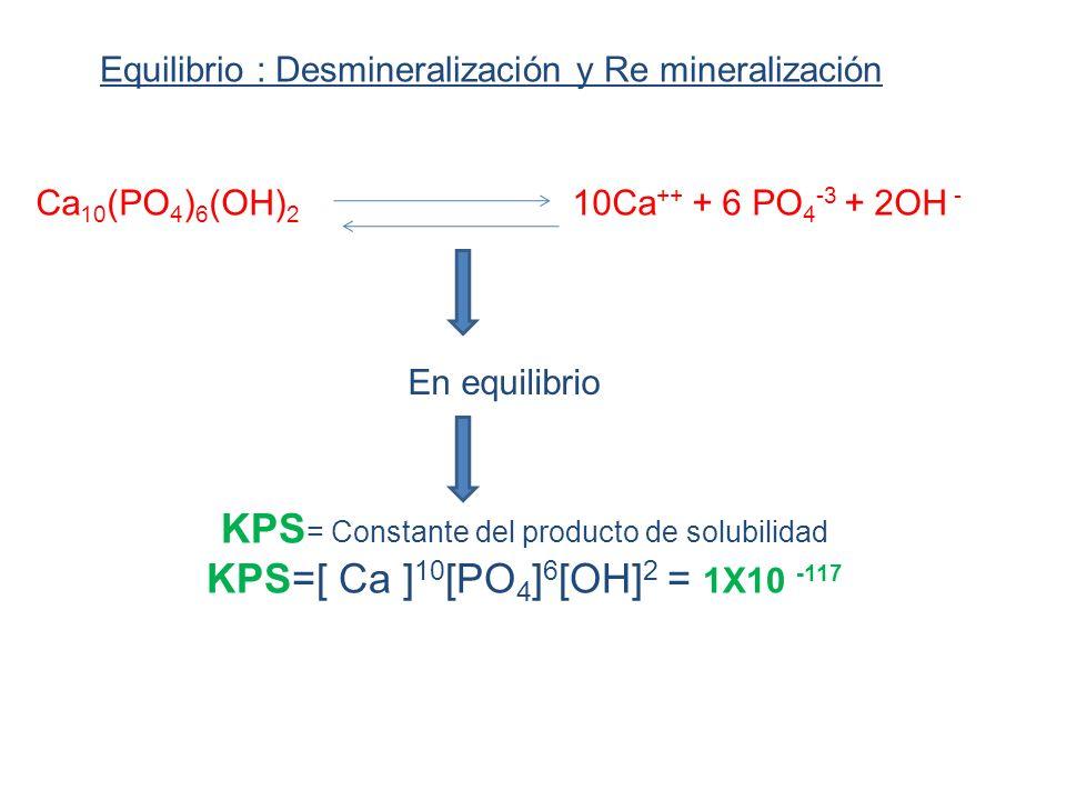 Equilibrio : Desmineralización y Re mineralización Ca 10 (PO 4 ) 6 (OH) 2 10Ca ++ + 6 PO 4 -3 + 2OH - KPS = Constante del producto de solubilidad KPS=[ Ca ] 10 [PO 4 ] 6 [OH] 2 = 1X10 -117 En equilibrio