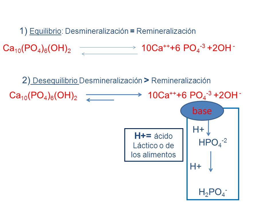 Ca 10 (PO 4 ) 6 (OH) 2 10Ca ++ +6 PO 4 -3 +2OH - 1) Equilibrio: Desmineralización = Remineralización 2) Desequilibrio Desmineralización > Remineralización H+ HPO 4 -2 H+ H 2 PO 4 - H+= ácido Láctico o de los alimentos base