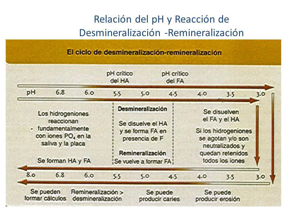 Relación del pH y Reacción de Desmineralización -Remineralización