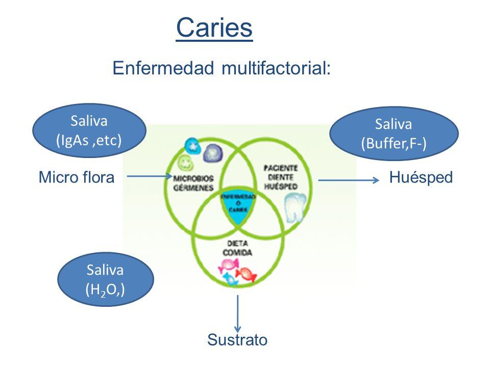 Caries Enfermedad multifactorial: Micro floraHuésped Sustrato Saliva (IgAs,etc) Saliva (H 2 O,) Saliva (Buffer,F-)