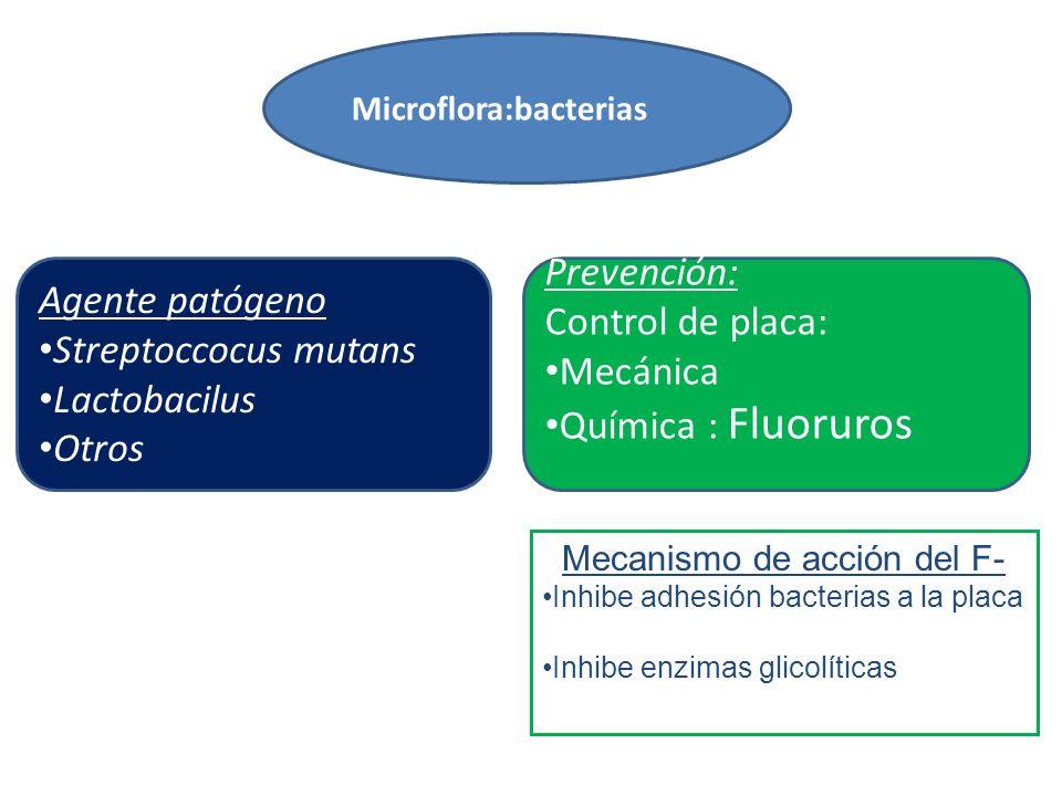 Agente patógeno Streptoccocus mutans Lactobacilus Otros Prevención: Control de placa: Mecánica Química : Fluoruros Microflora:bacterias Mecanismo de acción del F- Inhibe adhesión bacterias a la placa Inhibe enzimas glicolíticas