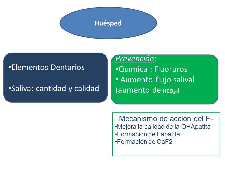 Elementos Dentarios Saliva: cantidad y calidad Prevención: Química : Fluoruros Aumento flujo salival (aumento de HCO 3 - ) Huésped Mecanismo de acción del F- Mejora la calidad de la OHApatita Formación de Fapatita Formación de CaF2