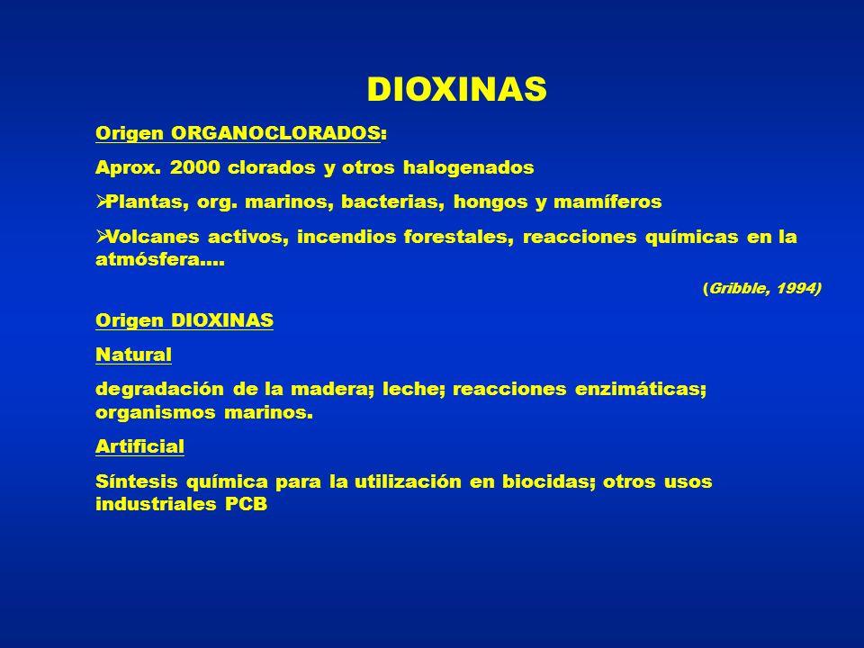 DIOXINAS 2,3,7,8 TCDD (2,3,7,8 TCDF) Considerada la más tóxica 1 gr – cobayo – 5 mgr hamster Dioxina de Seveso – Accidente en 1976 – 1 kg 10.000 veces – 15.291 niños (1977-92) ningún efecto ( Rüdiger,1993 ) Estudio de síntesis = bloqueante hormono-dependientes (mama, ovarios, útero, próstata) ( Kayajanian, 1997)