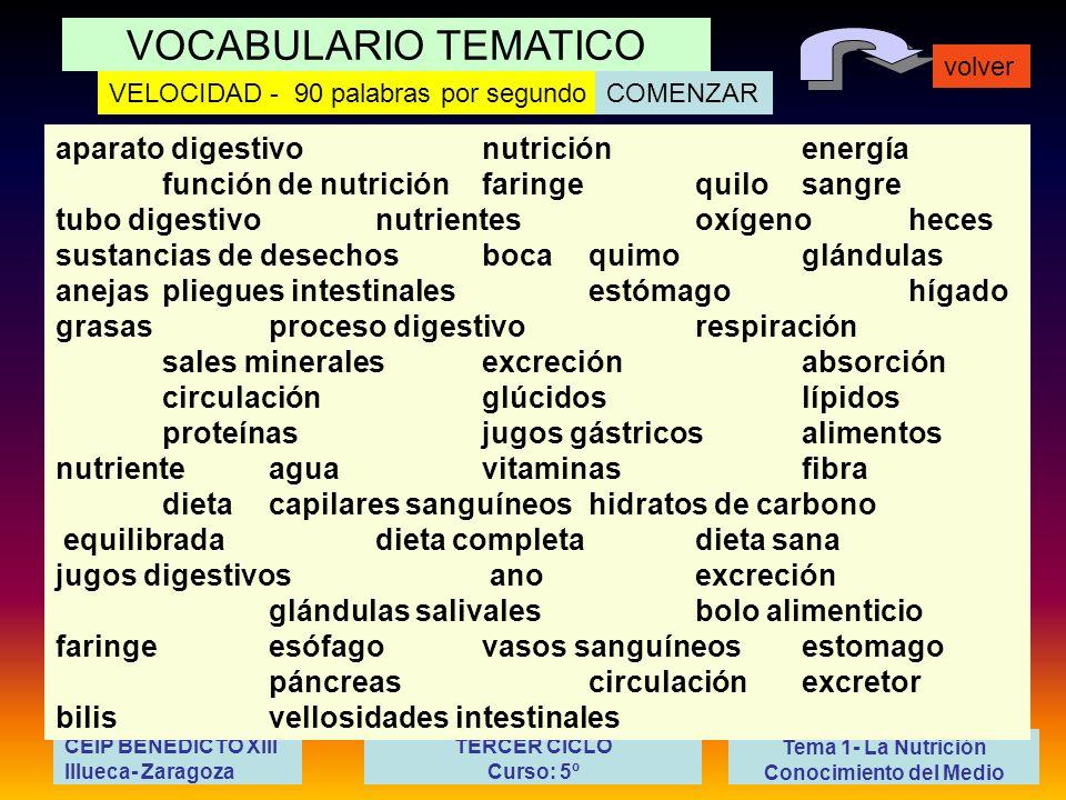 VOCABULARIO TEMATICO volver Tema 1- La Nutrición Conocimiento del Medio CEIP BENEDICTO XIII Illueca- Zaragoza TERCER CICLO Curso: 5º aparato digestivo