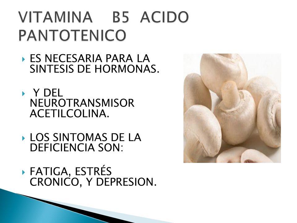 ES NECESARIA PARA LA SINTESIS DE HORMONAS. Y DEL NEUROTRANSMISOR ACETILCOLINA. LOS SINTOMAS DE LA DEFICIENCIA SON: FATIGA, ESTRÉS CRONICO, Y DEPRESION
