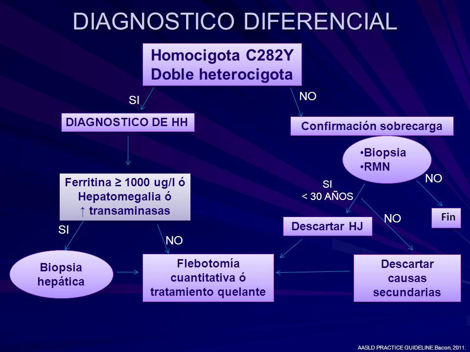 DIAGNOSTICO DIFERENCIAL Homocigota C282Y Doble heterocigota Homocigota C282Y Doble heterocigota SI NO DIAGNOSTICO DE HH Ferritina 1000 ug/l ó Hepatome