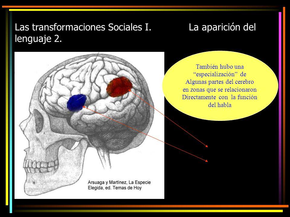 Las transformaciones Sociales I. La aparición del lenguaje 2.