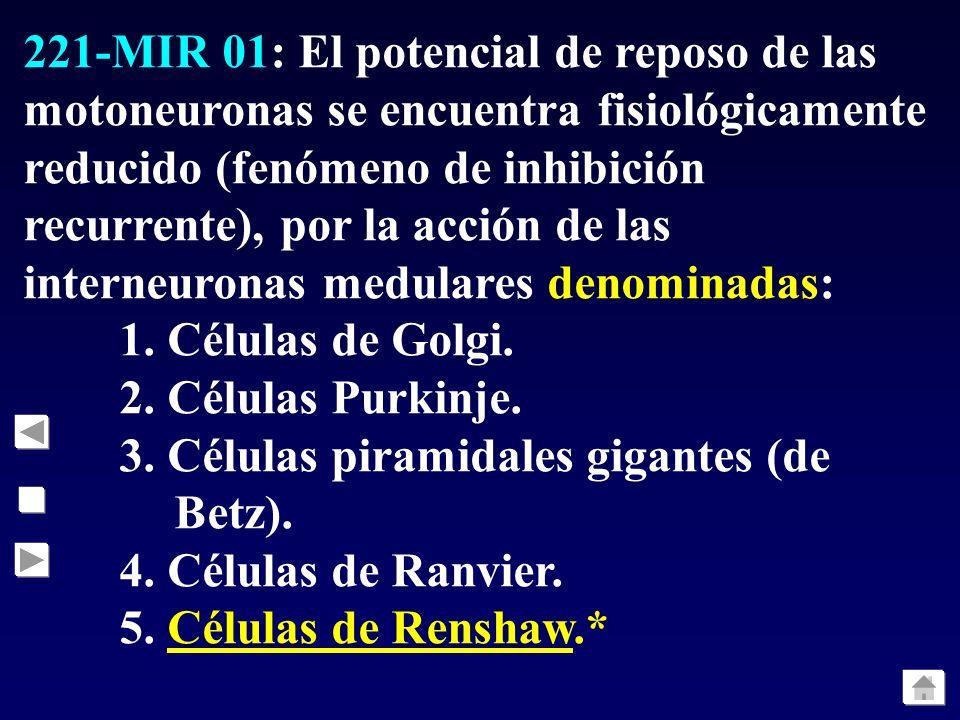 221-MIR 01: El potencial de reposo de las motoneuronas se encuentra fisiológicamente reducido (fenómeno de inhibición recurrente), por la acción de la