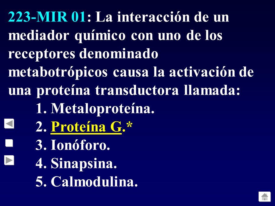 223-MIR 01: La interacción de un mediador químico con uno de los receptores denominado metabotrópicos causa la activación de una proteína transductora