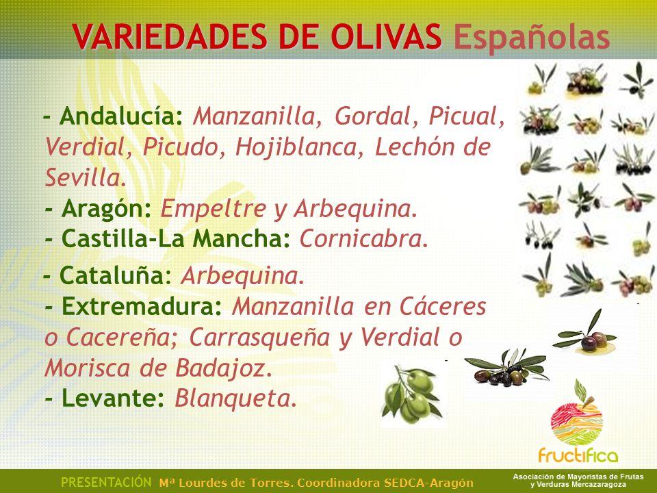 PRESENTACIÓN Mª Lourdes de Torres. Coordinadora SEDCA-Aragón VARIEDADES DE OLIVAS VARIEDADES DE OLIVAS Españolas - Andalucía: Manzanilla, Gordal, Picu