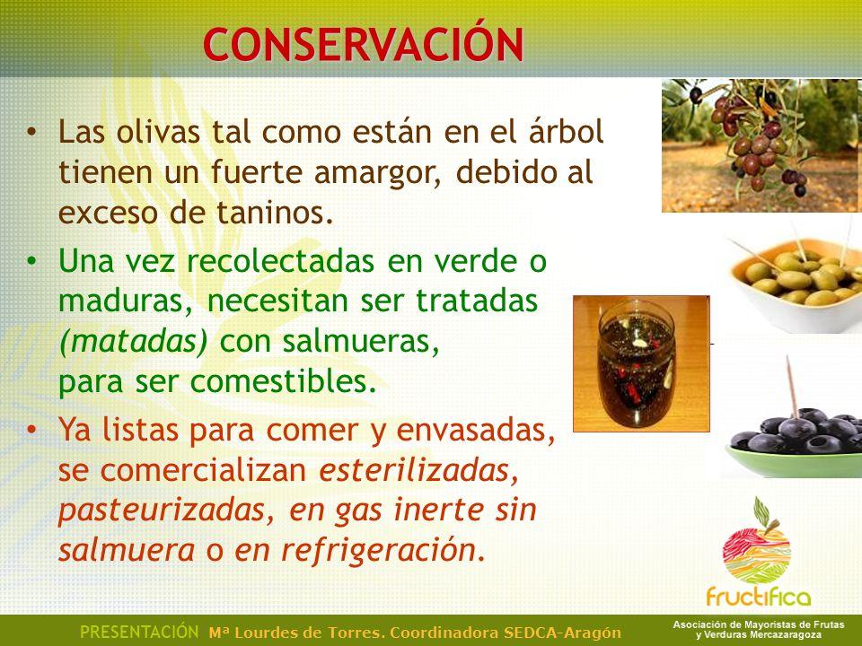 CONSERVACIÓN Las olivas tal como están en el árbol tienen un fuerte amargor, debido al exceso de taninos. Una vez recolectadas en verde o maduras, nec