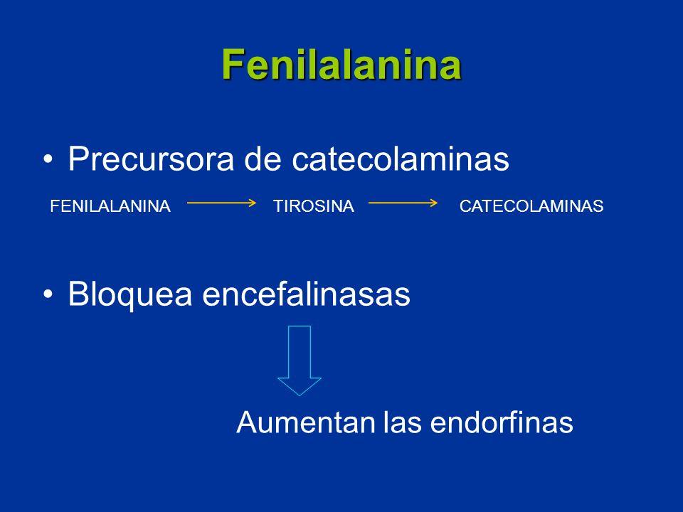 Fenilalanina Precursora de catecolaminas Bloquea encefalinasas Aumentan las endorfinas FENILALANINA TIROSINACATECOLAMINAS