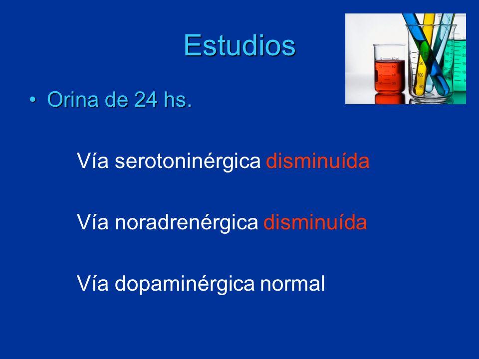 Estudios Orina de 24 hs.Orina de 24 hs. Vía serotoninérgica disminuída Vía noradrenérgica disminuída Vía dopaminérgica normal