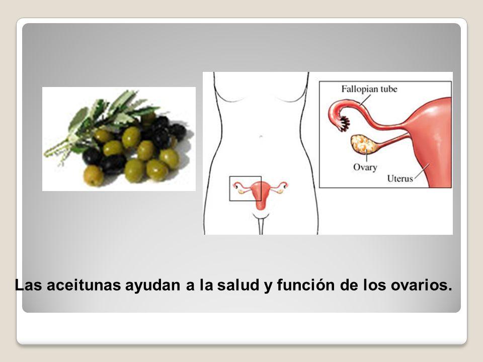 Las aceitunas ayudan a la salud y función de los ovarios.