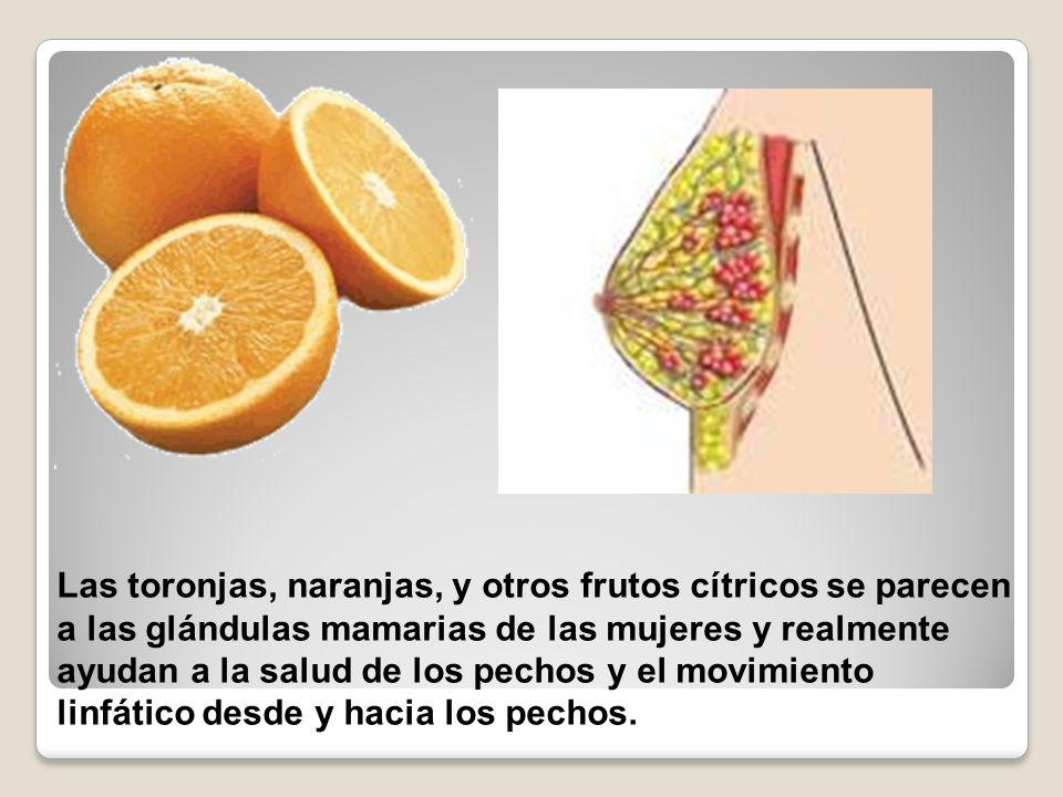 Las toronjas, naranjas, y otros frutos cítricos se parecen a las glándulas mamarias de las mujeres y realmente ayudan a la salud de los pechos y el mo