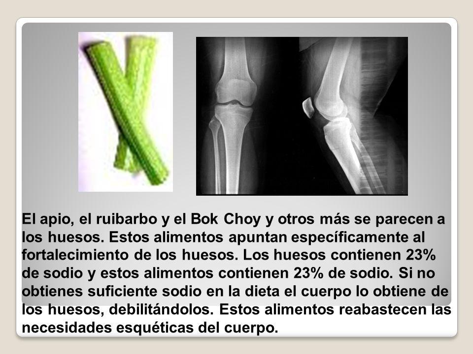 El apio, el ruibarbo y el Bok Choy y otros más se parecen a los huesos. Estos alimentos apuntan específicamente al fortalecimiento de los huesos. Los