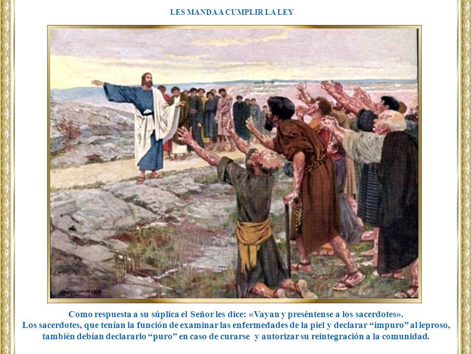 Como respuesta a su súplica el Señor les dice: «Vayan y preséntense a los sacerdotes». Los sacerdotes, que tenían la función de examinar las enfermeda