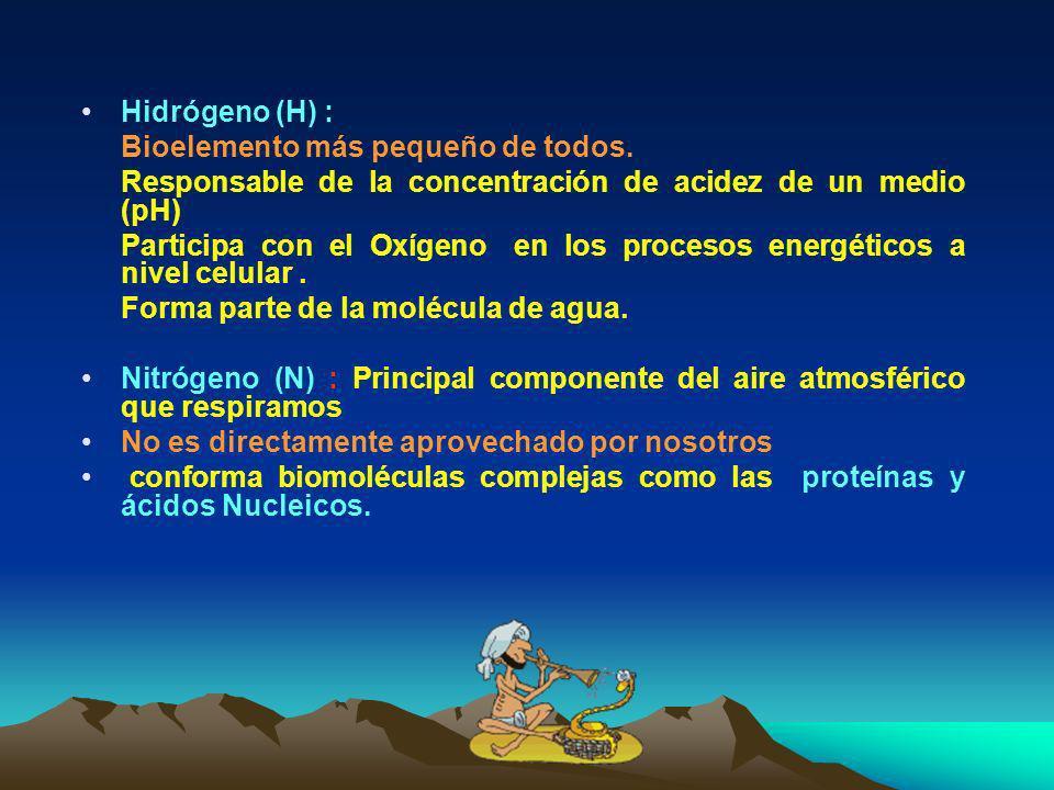 Carbono (C) Es el elemento central de las biomoléculas orgánicas. Presenta gran capacidad de formar enlaces covalentes. Conforma un gran % de seres vi