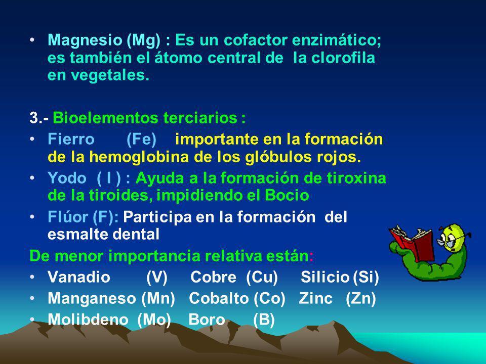 Potasio (K) : Es el principal catión intracelular ( dentro de las células), importante en la contracción muscular y en la transmisión de los impulsos