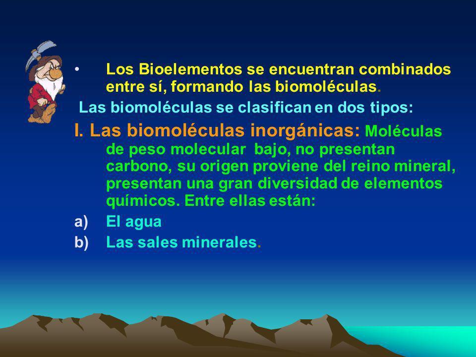 Magnesio (Mg) : Es un cofactor enzimático; es también el átomo central de la clorofila en vegetales. 3.- Bioelementos terciarios : Fierro(Fe)important