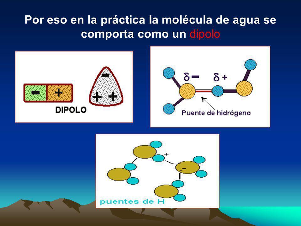 mientras que los núcleos de hidrógeno quedan desnudos, desprovistos parcialmente de sus electrones y manifiestan, por tanto, una densidad de carga pos