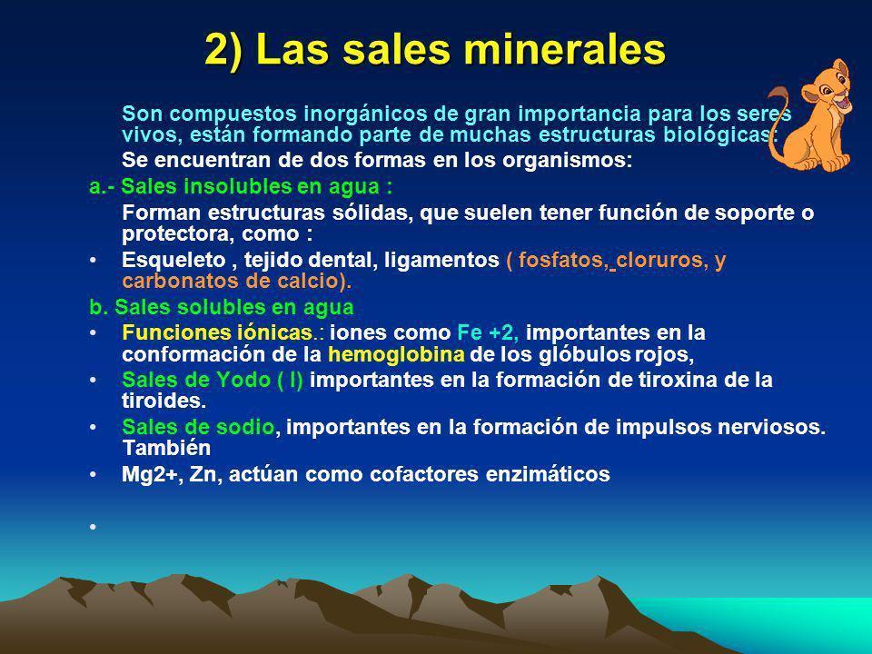 Funciones del agua 1)Gran poder disolvente( solvente universal) 2)Permite todas las reacciones químicas del metabolismo 3)Es termorreguladora por alma