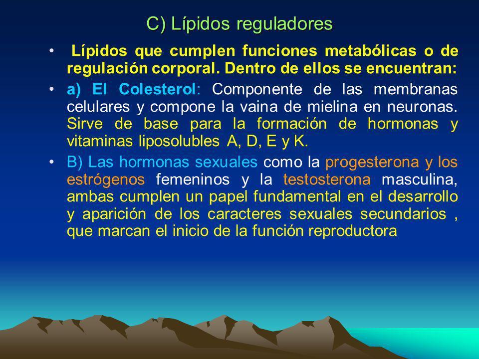 B) Lípidos estructurales a) Los Fosfolípidos: Compuestos por una parte lipídica y un extremo polar ( fosfato). Son componentes de las membranas celula