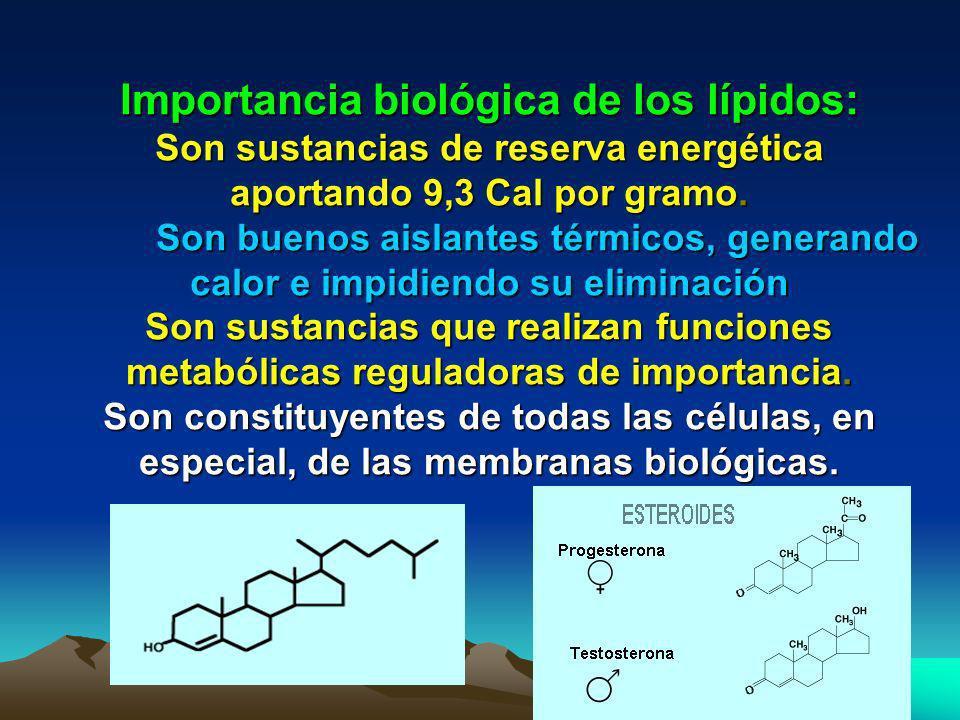 C) Lípidos reguladores Lípidos que cumplen funciones metabólicas o de regulación corporal. Dentro de ellos se encuentran: a) El Colesterol: Componente