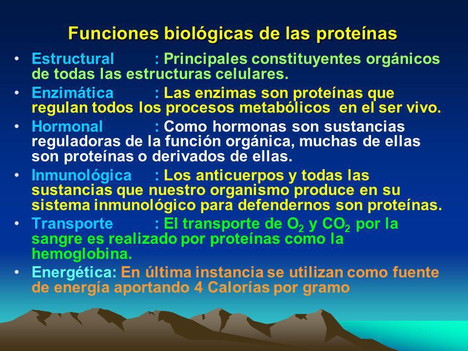 Clasificación de las proteínas a) Fibrosas: Son proteínas duras, presentan gran resistencia, son elásticas, no cambian de posición, insolubles en agua