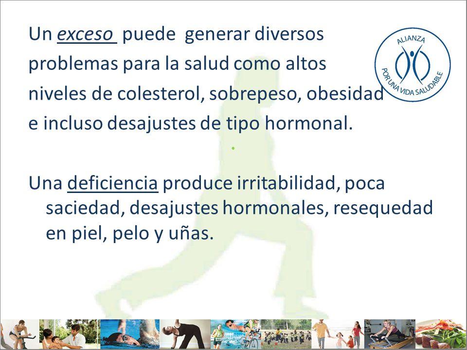 Un exceso puede generar diversos problemas para la salud como altos niveles de colesterol, sobrepeso, obesidad e incluso desajustes de tipo hormonal.
