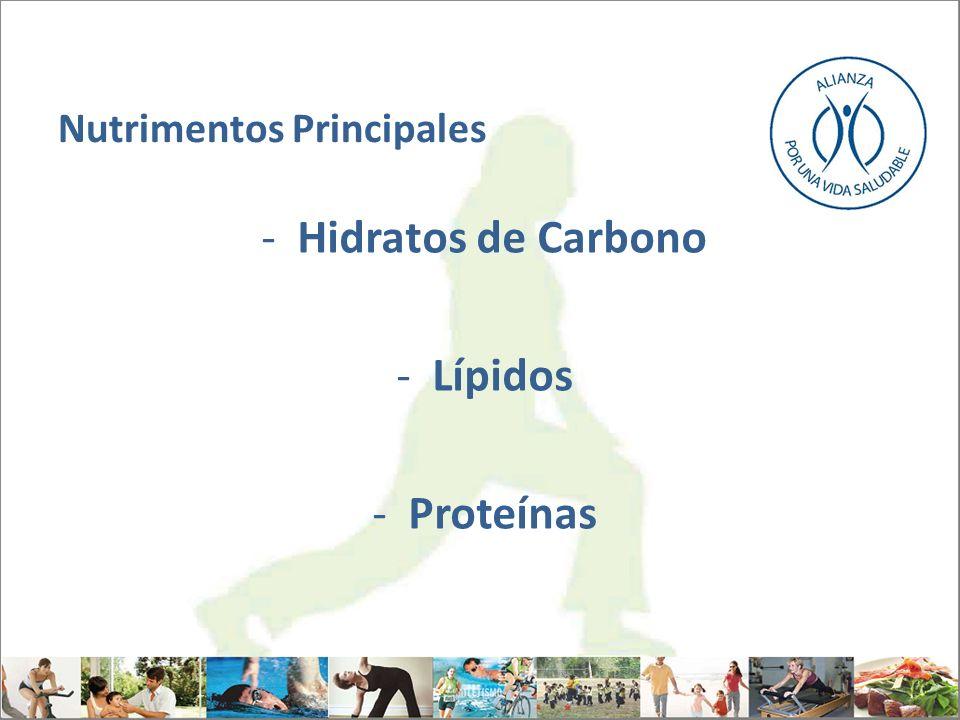 Nutrimentos Principales -Hidratos de Carbono -Lípidos -Proteínas