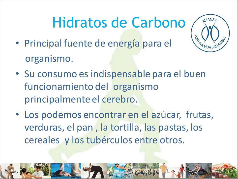Hidratos de Carbono Principal fuente de energía para el organismo. Su consumo es indispensable para el buen funcionamiento del organismo principalment