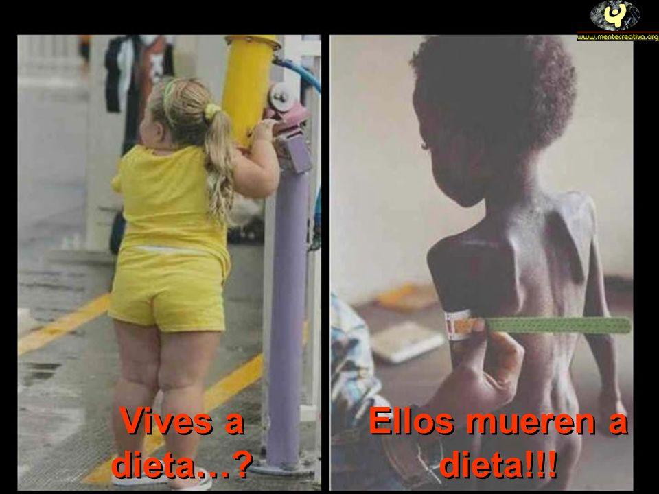 Vives a dieta…? Ellos mueren a dieta!!!