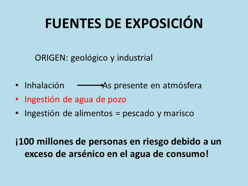 FUENTES DE EXPOSICIÓN ORIGEN: geológico y industrial Inhalación As presente en atmósfera Ingestión de agua de pozo Ingestión de alimentos = pescado y
