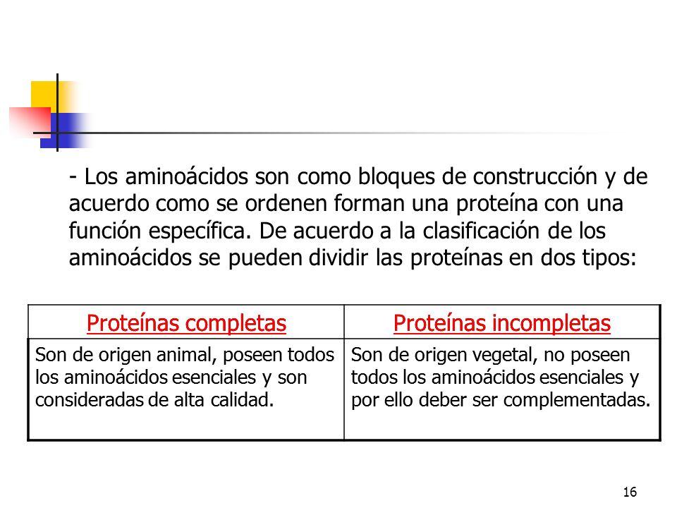 16 - Los aminoácidos son como bloques de construcción y de acuerdo como se ordenen forman una proteína con una función específica. De acuerdo a la cla
