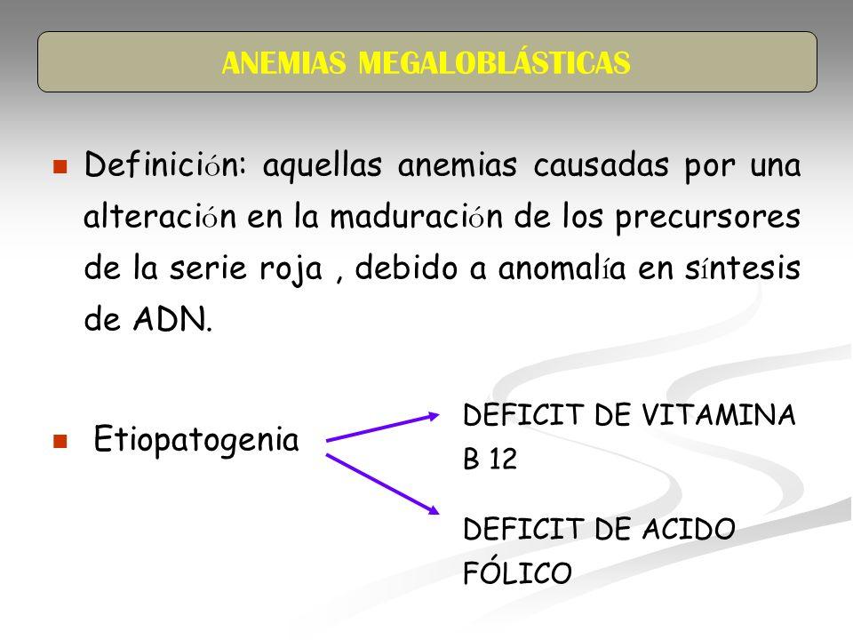 Definici ó n: aquellas anemias causadas por una alteraci ó n en la maduraci ó n de los precursores de la serie roja, debido a anomal í a en s í ntesis