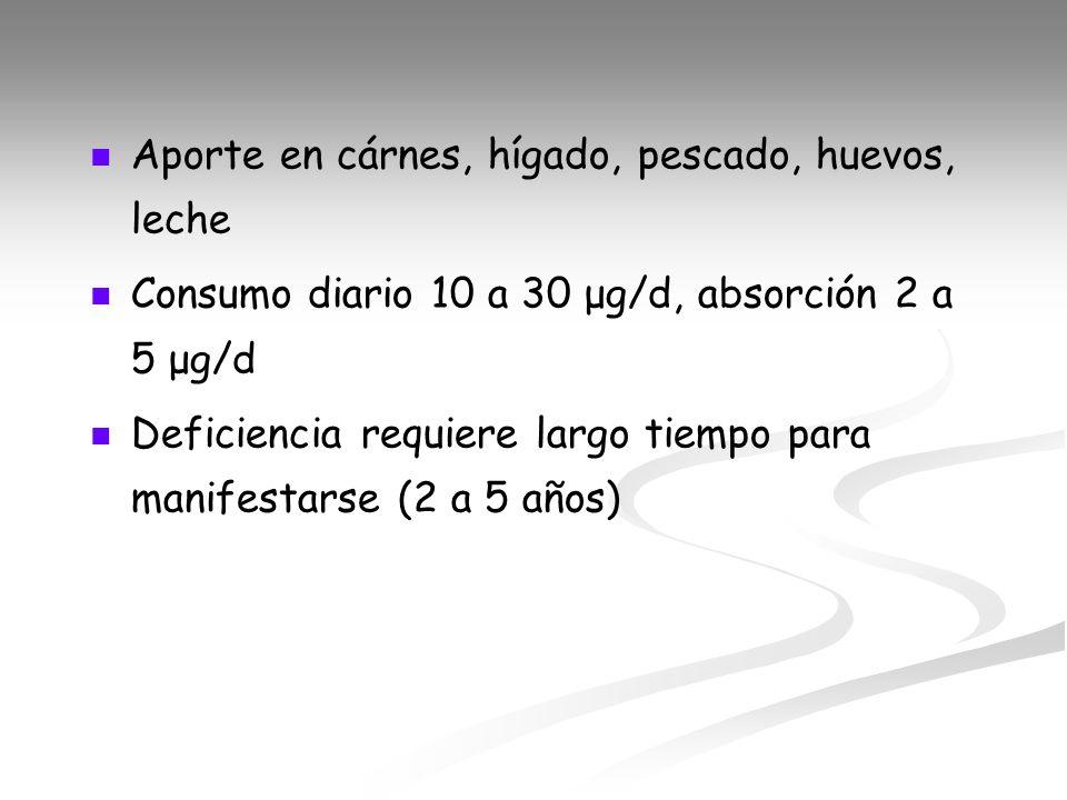Aporte en cárnes, hígado, pescado, huevos, leche Consumo diario 10 a 30 μg/d, absorción 2 a 5 μg/d Deficiencia requiere largo tiempo para manifestarse