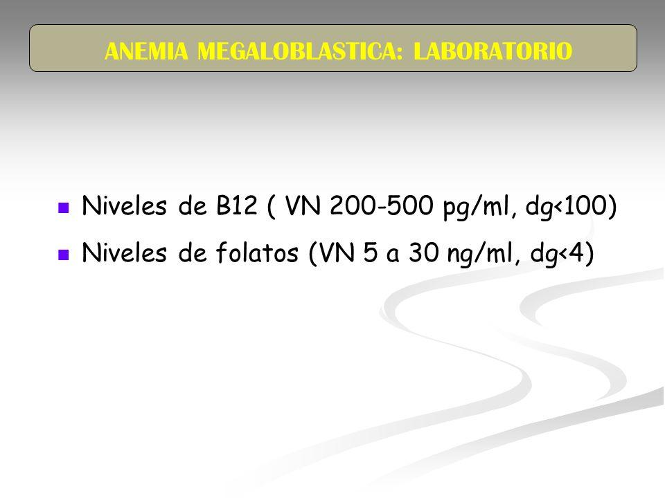 ANEMIA MEGALOBLASTICA: LABORATORIO Niveles de B12 ( VN 200-500 pg/ml, dg<100) Niveles de folatos (VN 5 a 30 ng/ml, dg<4)