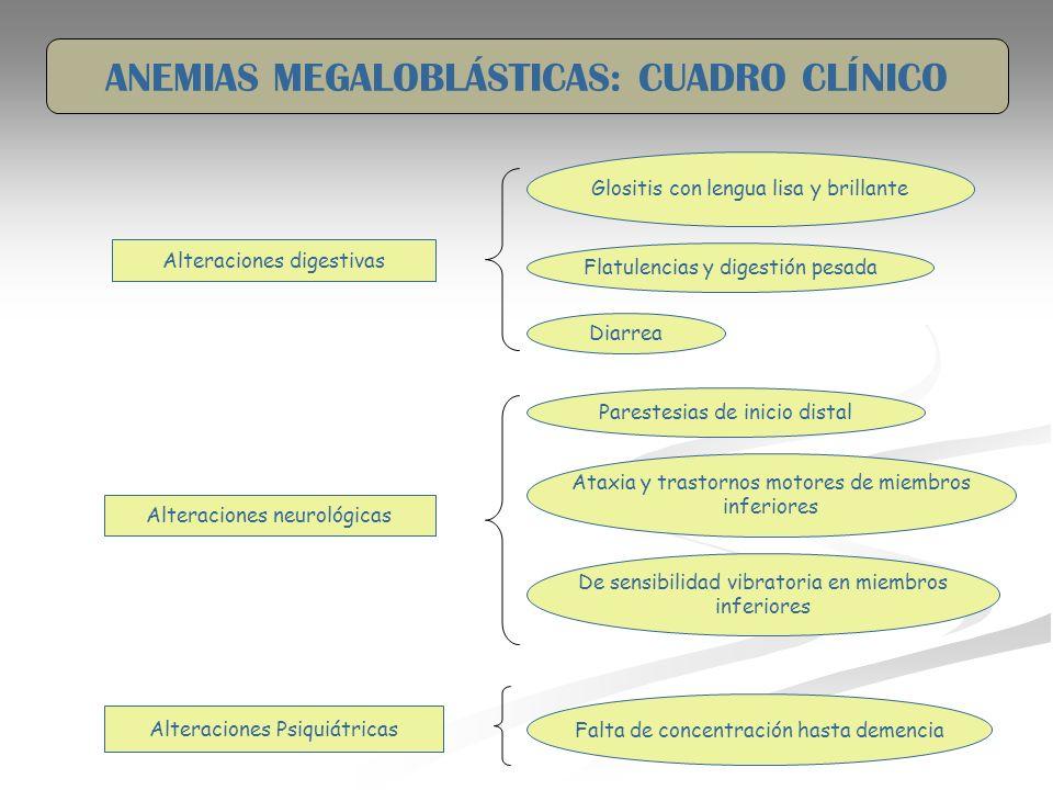 Alteraciones digestivas Glositis con lengua lisa y brillante Flatulencias y digestión pesada Diarrea Alteraciones neurológicas Parestesias de inicio d