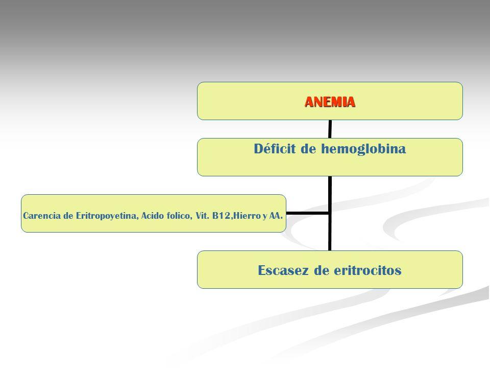 ANEMIA Déficit de hemoglobina Escasez de eritrocitos Carencia de Eritropoyetina, Acido folico, Vit. B12,Hierro y AA.