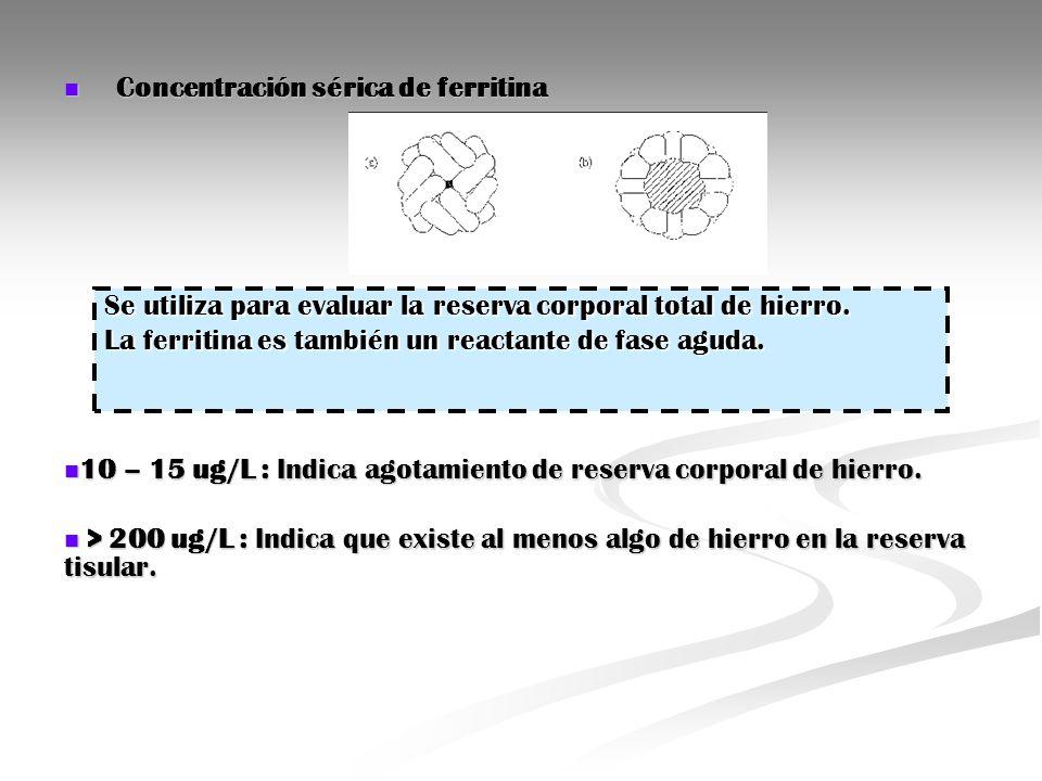 Concentración sérica de ferritina Concentración sérica de ferritina 10 – 15 ug/L : Indica agotamiento de reserva corporal de hierro. 10 – 15 ug/L : In