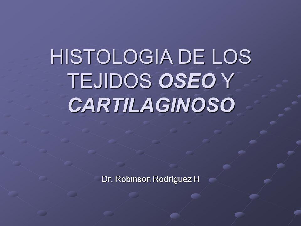 HISTOLOGIA DE LOS TEJIDOS OSEO Y CARTILAGINOSO Dr. Robinson Rodríguez H