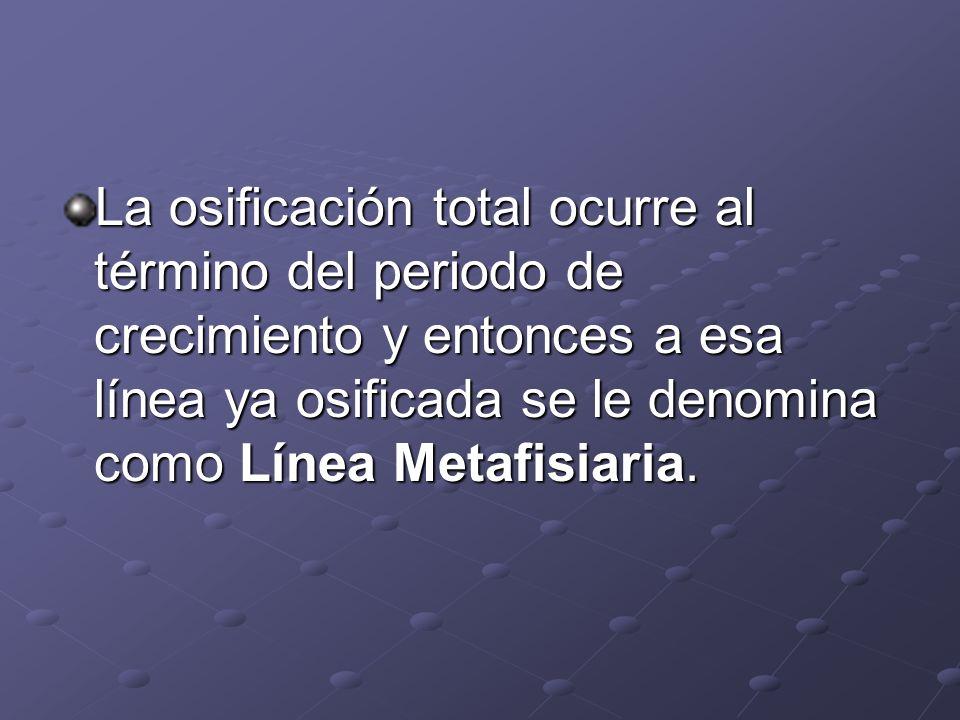 La osificación total ocurre al término del periodo de crecimiento y entonces a esa línea ya osificada se le denomina como Línea Metafisiaria.