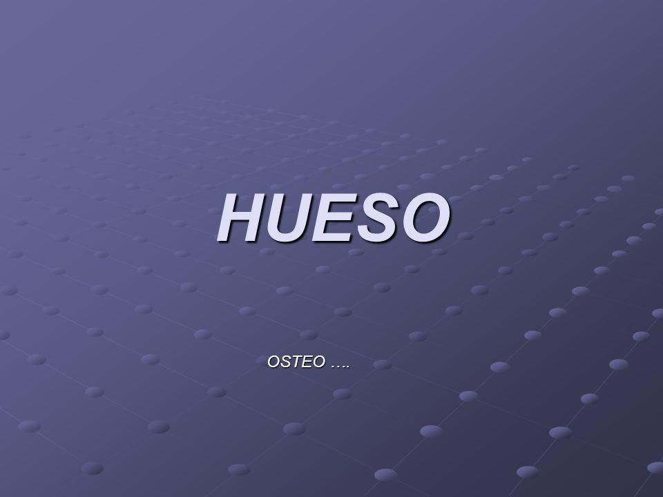 HUESO OSTEO ….