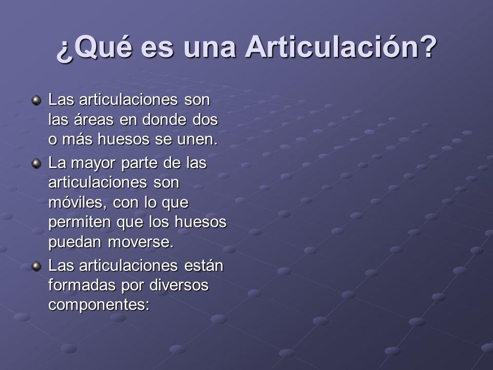 ¿Qué es una Articulación? Las articulaciones son las áreas en donde dos o más huesos se unen. La mayor parte de las articulaciones son móviles, con lo