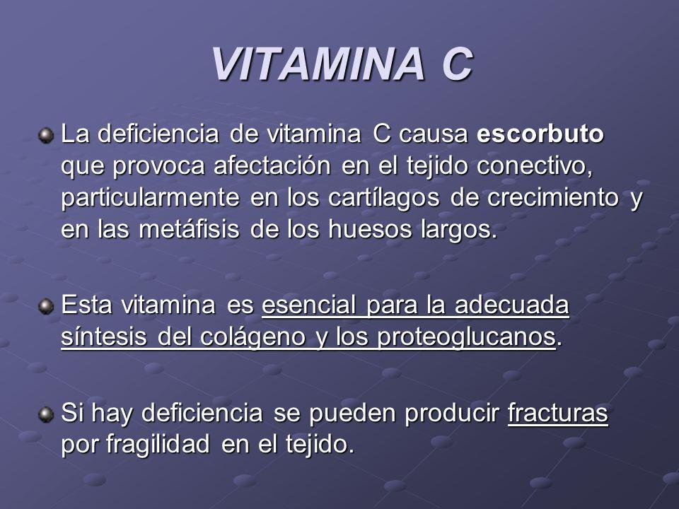 VITAMINA C La deficiencia de vitamina C causa escorbuto que provoca afectación en el tejido conectivo, particularmente en los cartílagos de crecimient