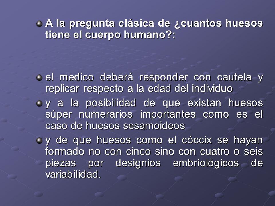 A la pregunta clásica de ¿cuantos huesos tiene el cuerpo humano?: el medico deberá responder con cautela y replicar respecto a la edad del individuo y