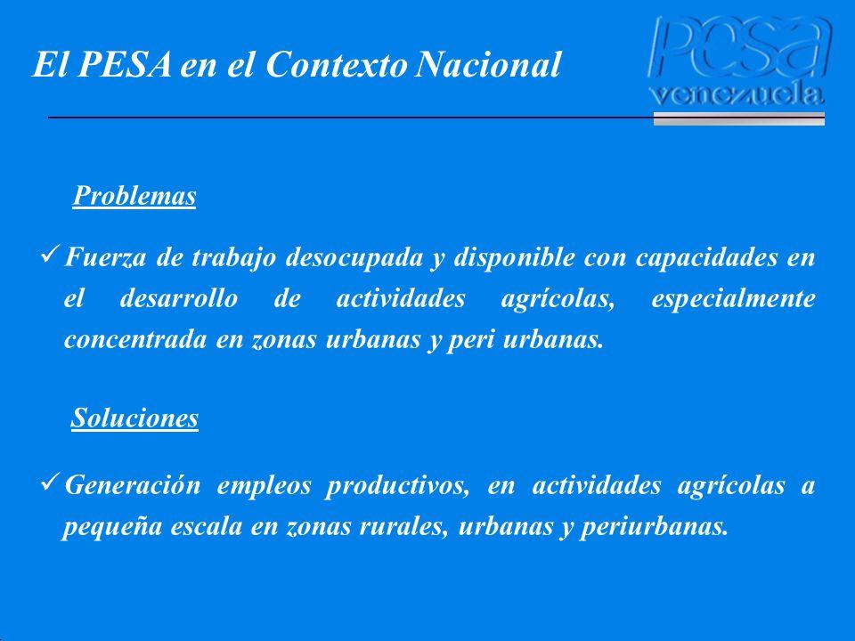 El PESA en el Contexto Nacional Problemas Soluciones Fuerza de trabajo desocupada y disponible con capacidades en el desarrollo de actividades agrícol